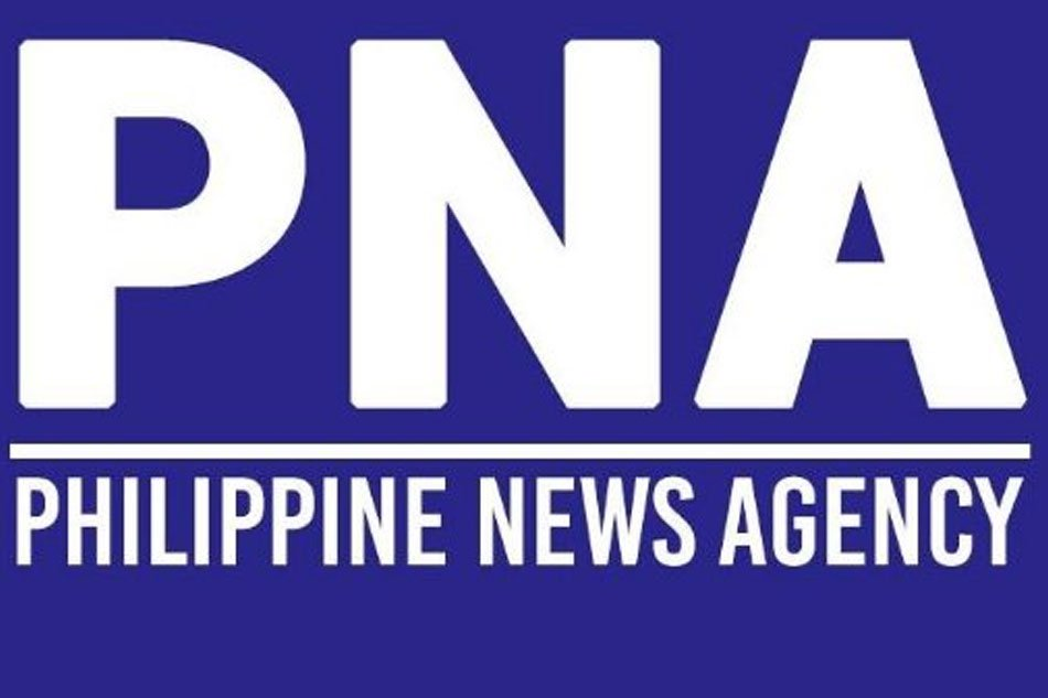 Travel agencies appeal ruling on passport slots | PTAA | Philippine